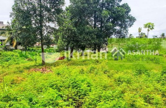117 P Commercial Land Sale Kottawa