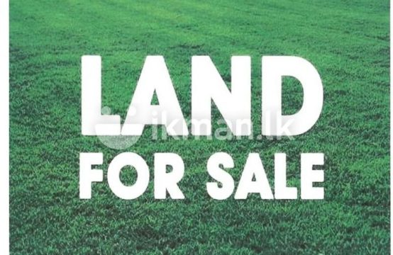 14P Land with Two Story House Sale at Bullers Lane Colombo 07