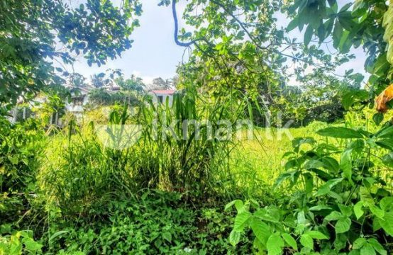 16 P Bare Land Sale At Facing Kanatha Road Pannipitiya