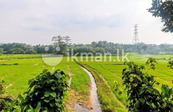 Facing Beautifull Paddy Field 62.25 P Land Sale at Pitipana Homagama