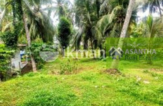 28 Perches Bare Land Sale At Facing Udawatha Road Malabe