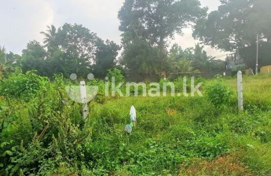 51 P Bare Land Sale at Jubbli Post Kotte