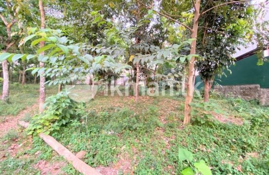 15 P Bare Land Sale At Lake Road Thalawathugoda