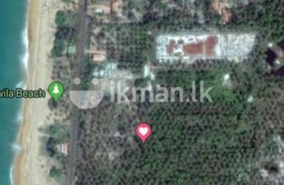 Iranawila Beach Front 10 Acre Land for Sale
