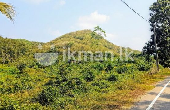 16 Acre Land Sale at Nebada, Kalutara