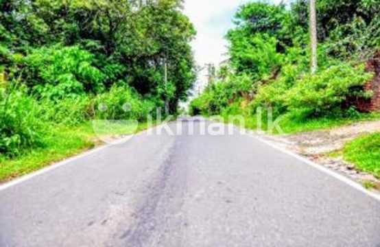 Land for Sale 40 P Rumasala Galle